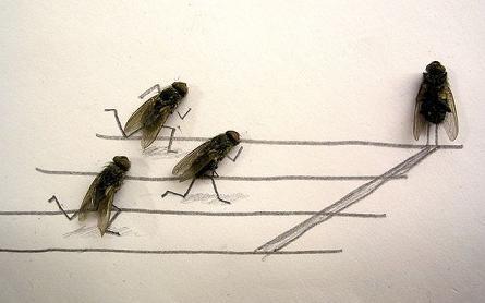 dead flies art 01 j