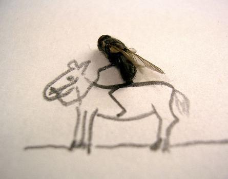 dead flies art 04 j