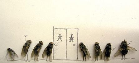 dead flies art 07 j