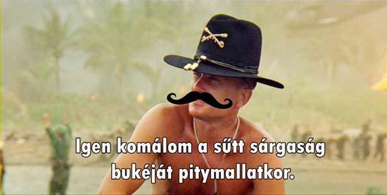hungaro napalm1