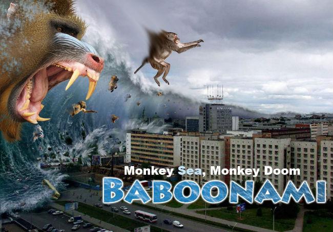 baboonami