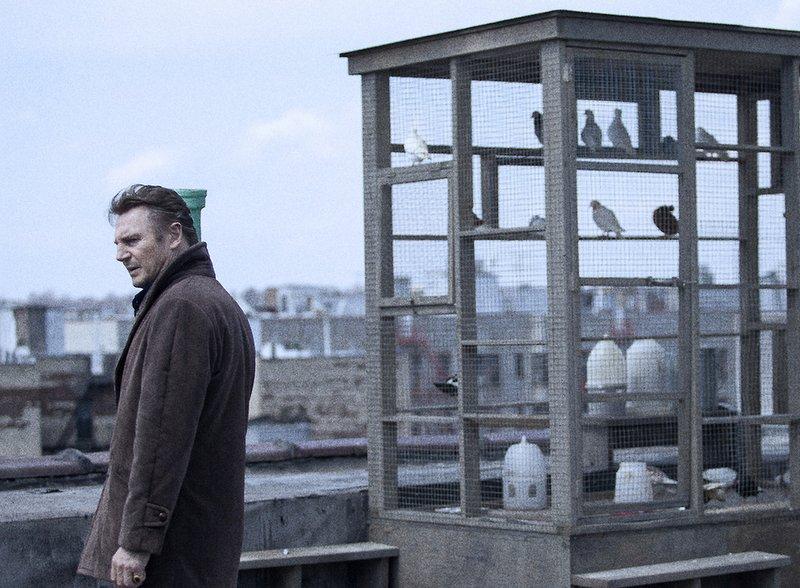 Liam és a galambok