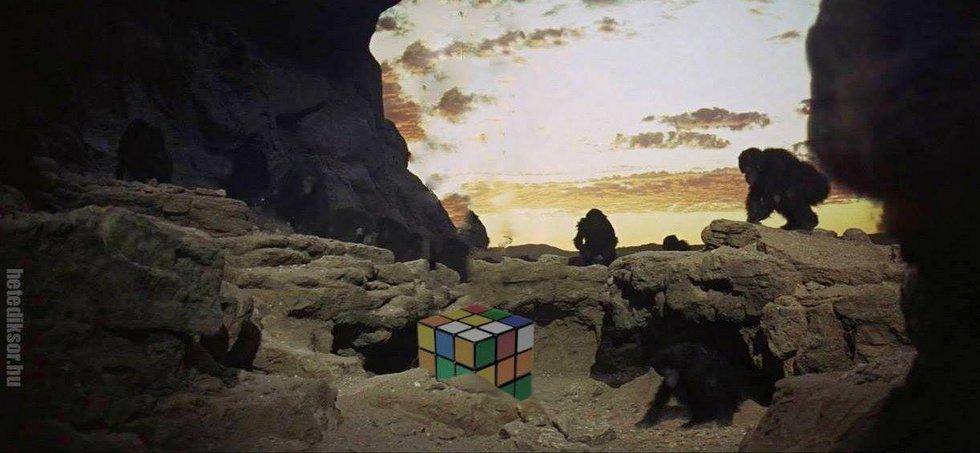 2001 Rubik éve