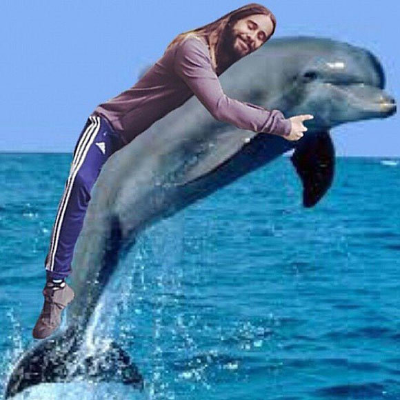 Jared-Hugging-Dolphin