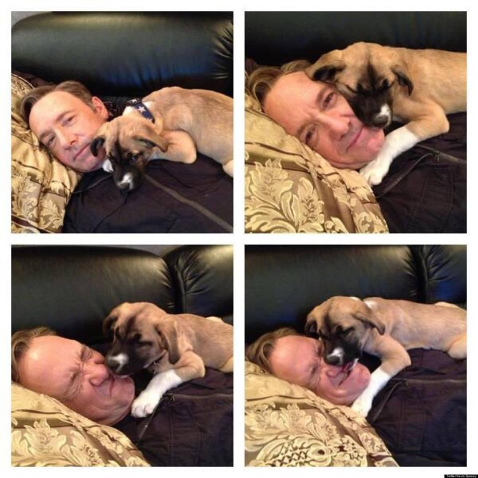 Kevin Spacey és a kutya