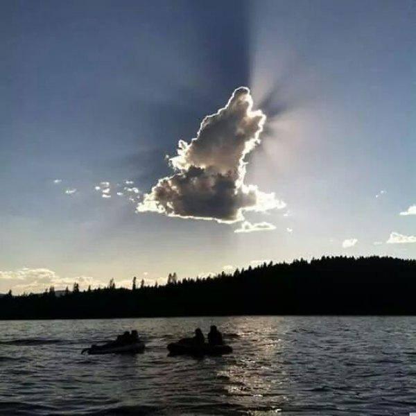 Stark felhő