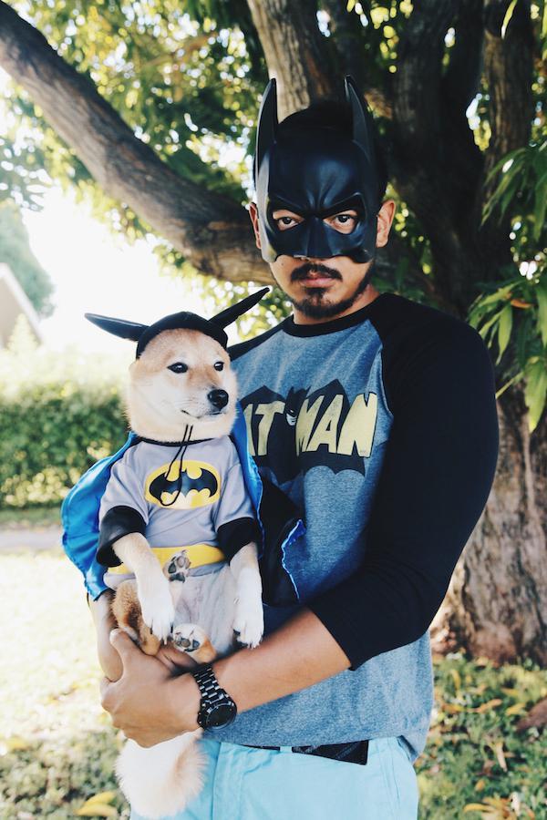 Batman gazda