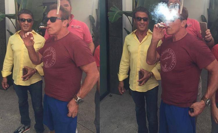 Sly és Arnie