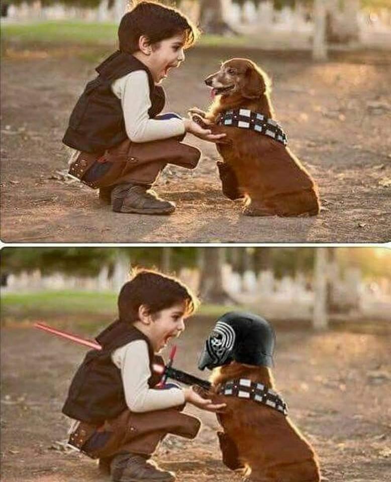 kutyafáját