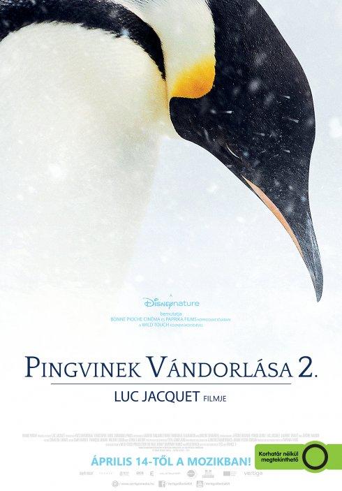 pingvinek vandrolasa2 plakat
