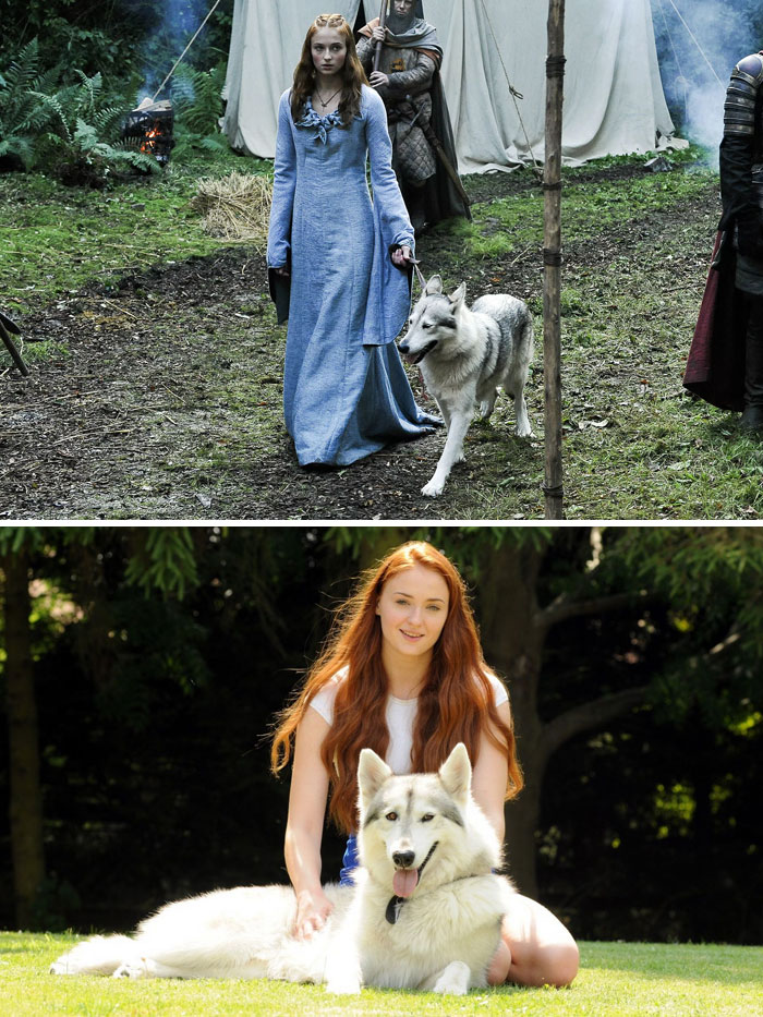 game of thrones facts 5 1