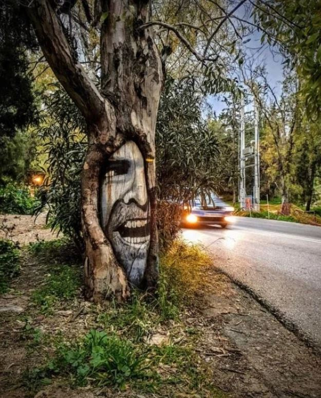 fa odvában