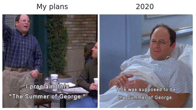 2020 d