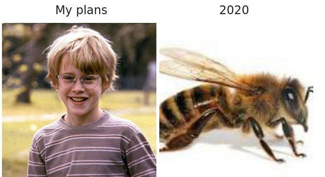 2020 i
