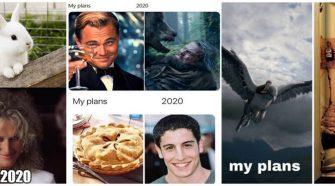 tervek 2020